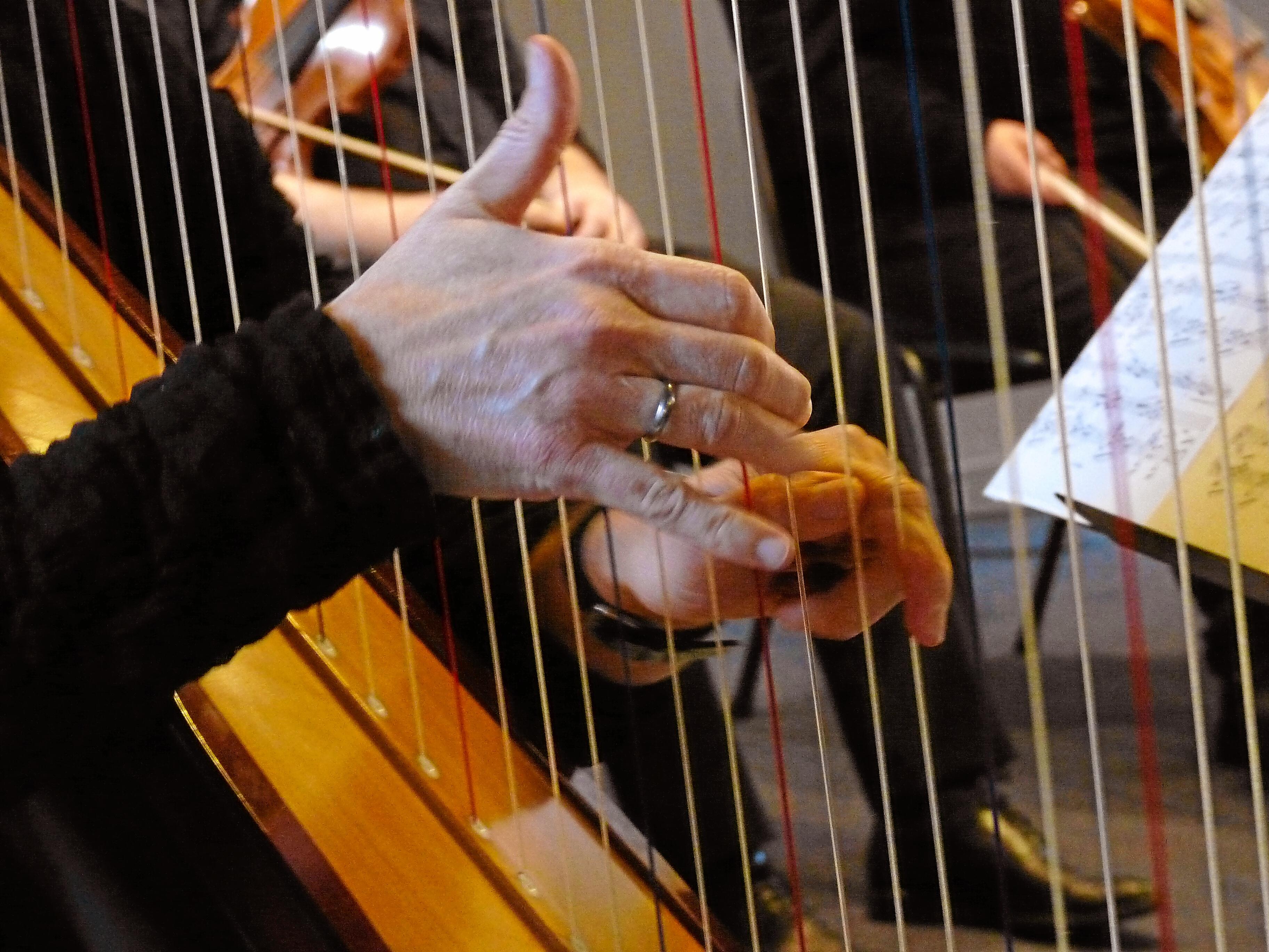 Klassiek op Zuid, harp